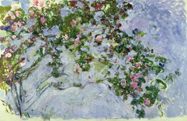 MMT 161014                                                         The Roses, 1925-26 (oil on canvas)                                                         Monet, Claude (1840-1926)                                                         MUSEE MARMOTTAN MONET, PARIS, ,