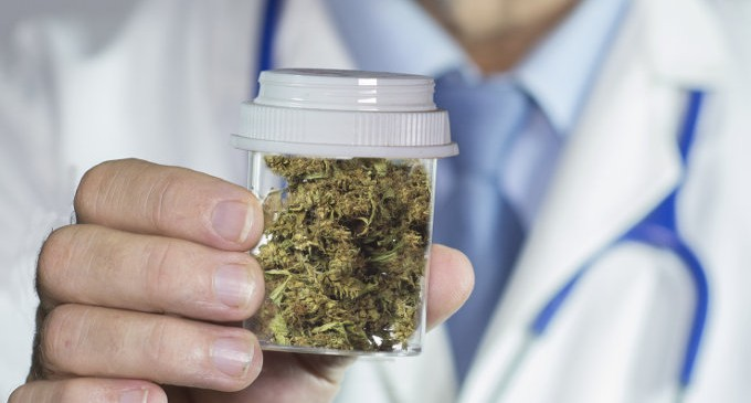 Cannabis-medica-linee-guida-per-l'utilizzo-della-marijuana-nel-trattamento-del-dolore-680x365