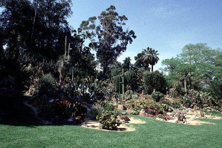 L'Orto botanico di Napoli diventa il regno di Oz