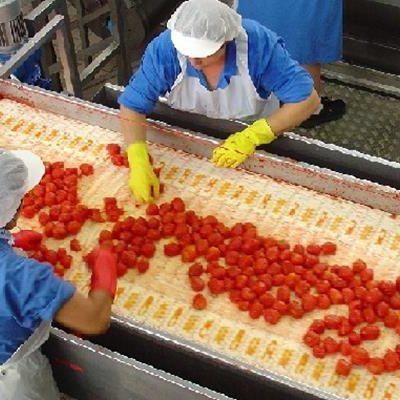 Deflazione, shock per i prezzi delle verdure: crollo del 12%
