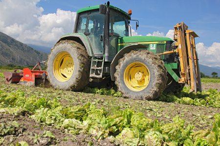 Agricoltura, incremento record dei posti di lavoro
