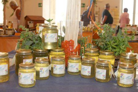 Cambiamenti climatici e pesticidi, il miele è in crisi: produzione giù del 70% e rincari del 20%