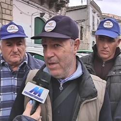 Brucellosi in Sicilia, l'emergenza e i proclami dei politici