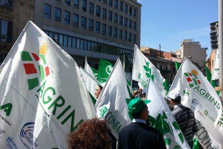 Imu e Tasi, in piazza la protesta degli agricoltori