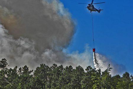 Palermo, incendio doloso distrugge 10 ettari a Pollina