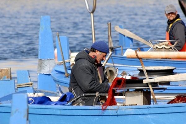 Nutrire il Pianeta e il contributo dell'economia del Mare