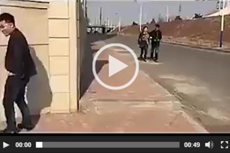 Video divertenti