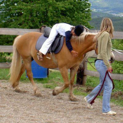 BENESSERE / NUOVI ORIZZONTI FISIOTERAPIA – Fabio Stadio e Alfonso Beatrice: Quando la riabilitazione si fa con un cavallo per amico