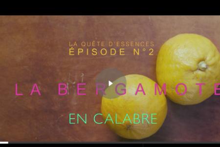 I profumi del Sud, Dior celebra il bergamotto in Calabria