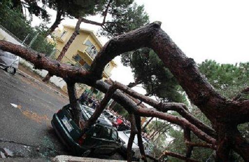 Vento forte in Sicilia e Calabria, muore un 51enne nel Reggino