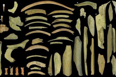 Scoperte: ecco la prova che gli uomini di Neanderthal vissuti nel Nord Europa erano cannibali