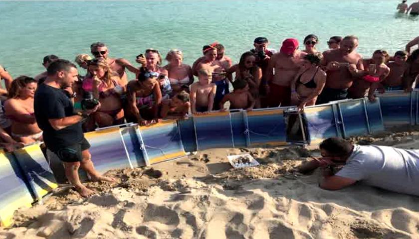 Il video straordinario delle 87 tartarughe nate su una spiaggia del Tarantino