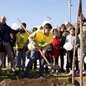 Nuovi alberi, Catania diventa più verde