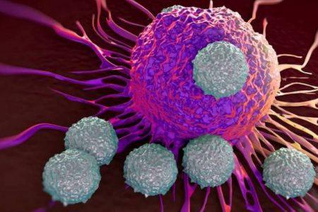 Tumori, con l'immuno-terapia quadruplica la sopravvivenza