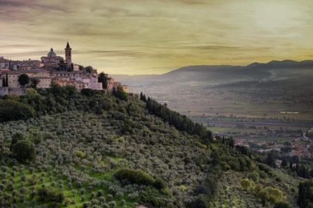Città dell'olio, in Calabria per un'esperienza  di gusto e cultura con la Camminata tra gli olivi