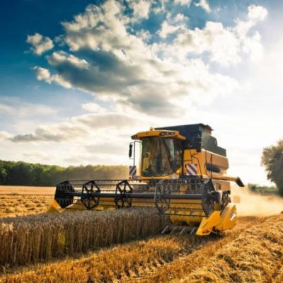 EMERGENZA AGRICOLTURA/Le soluzioni in campo per salvare i raccolti