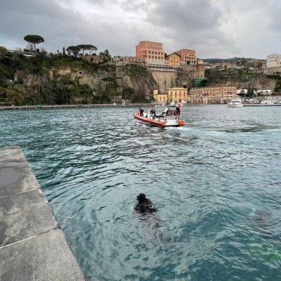 Balenottera arenata nel porto di Sorrento